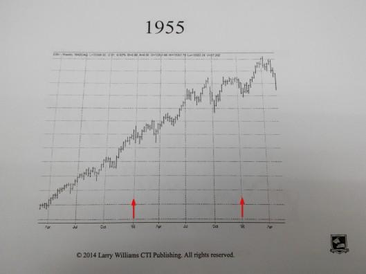 1955年股市是升的